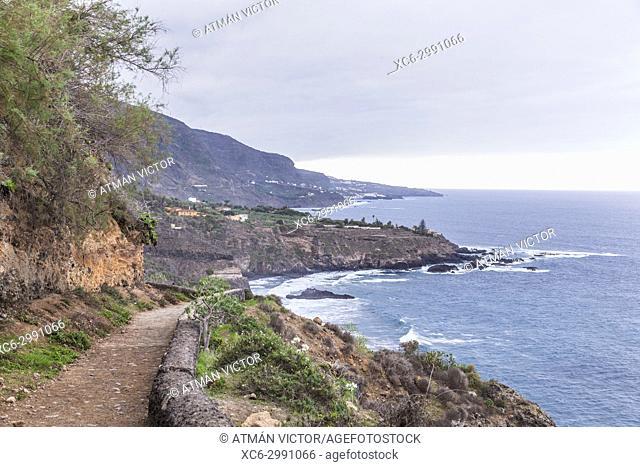 protected space of Rambla de Castro. Tenerife island. Spain