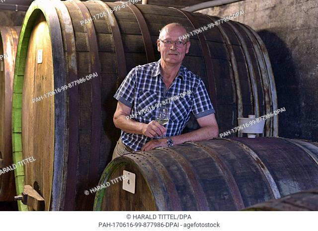 Helmut Gindorf stands holding a glass of wine amidst old wooden barrels in the Gindorf Winery in Lieser, Germany, 05 June 2017