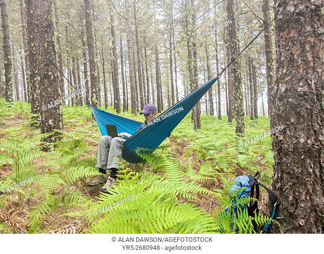 Mature male hiker using laptop in hammock in forest. Travel/retirement/adventure/ digital nomad/. . . concept image. Model Released