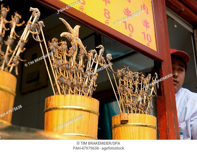 Scopriones on a stick are sold as food in Beijing, China, 14 April 2014.They are still alive to show that they are fresh