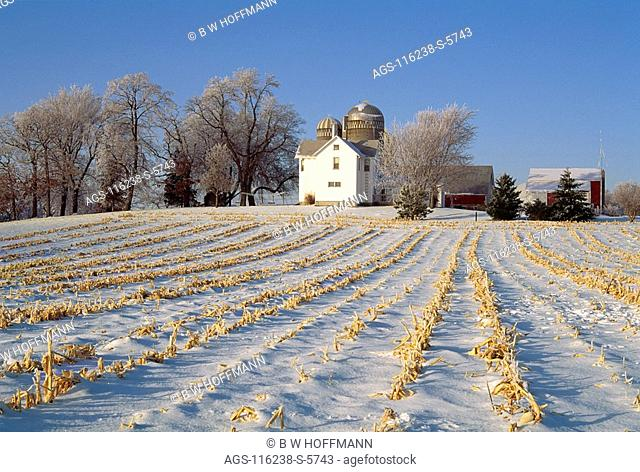 Agriculture - Field of corn stubble covered by snow with farm house, barns and silos / Buffalo County, Wisconsin, USA