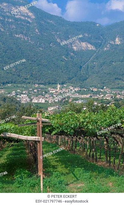 Blick auf Kaltern am See an der Südtiroler Weinstrasse