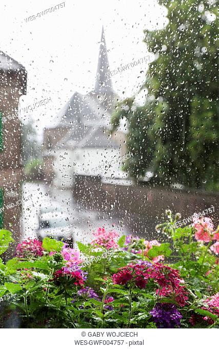 Germany, Cologne, heavy rain in summer, summer flowers in flower box and rain drops on windowpane