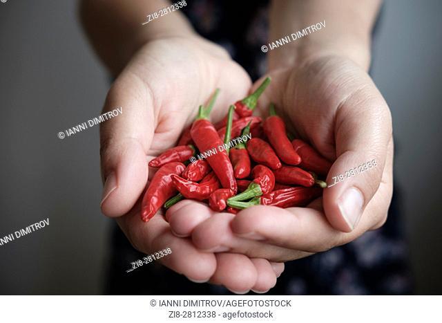 Thai bird's eye chilies-Capsicum frutescens