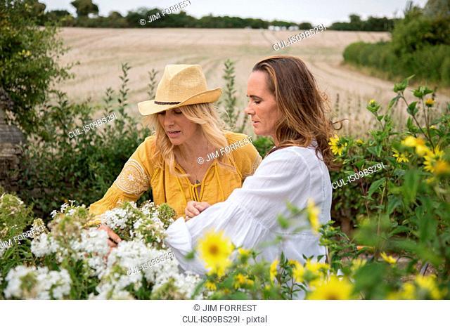 Women working on garden in countryside