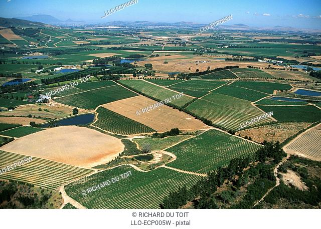 Aerial View of the Winelands  Near Stellenbosch, Western Cape Province, South Africa