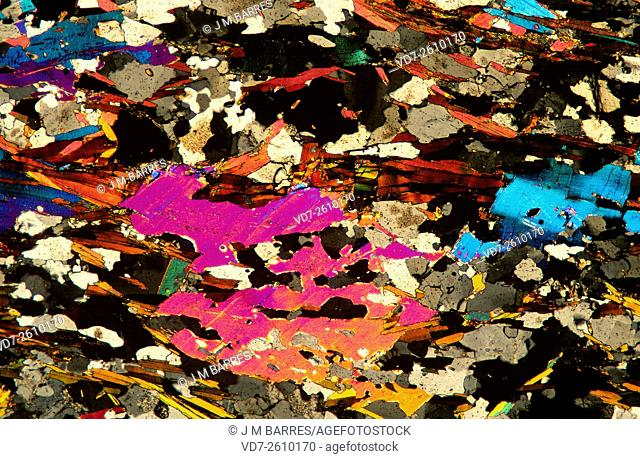 Schist photomicrograph X15 showing crystals orientation (foliated). Schist is a metamorphic rock. Optical microscope with polarized light