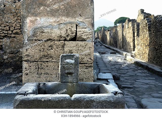 fountain, archeological site of Pompeii, province of Naples, Campania region, southern Italy, Europe