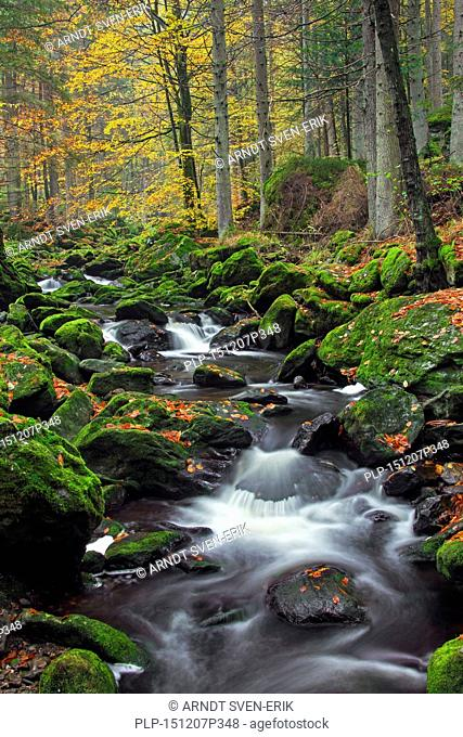 Waterfalls on the Große Ohe river which flows through the Steinklamm valley, Bavarian Forest National Park, Bavaria, Germany