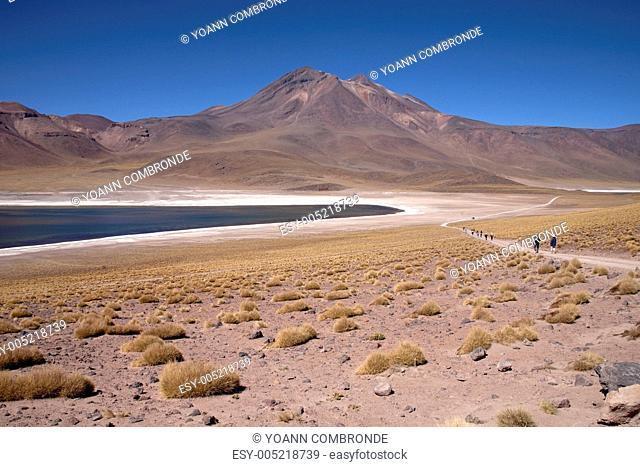 Lagunas Miscanti and Meniques in Atacama desert near Andes