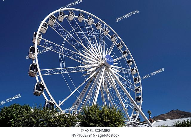 Cape Wheel, V&A Waterfront, Cape Town, Western Cape, South Africa, Africa