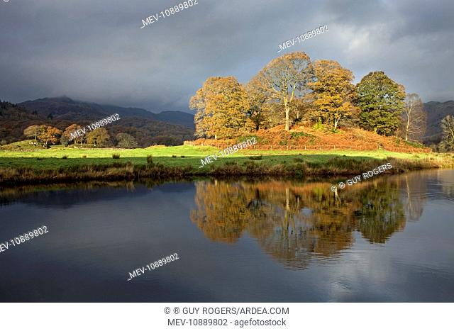 Golden reflection in the river Brathey. Elterwater - Lake District
