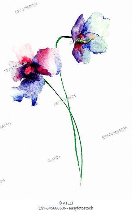 Blue wild flowers, watercolor illustration