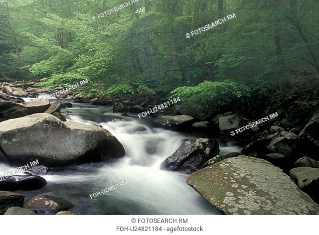 Great Smoky Mountain National Park, NC, North Carolina, Oconaluftee River, Water flows over rocks along the Oconaluftee River in the Great Smoky Mtns
