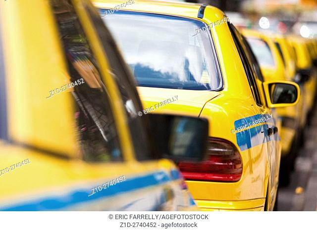 line of Taxi cabs Funchal Madeira
