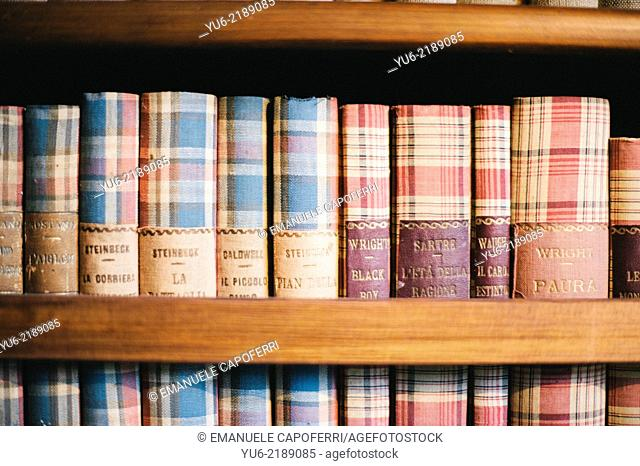 Library with old books