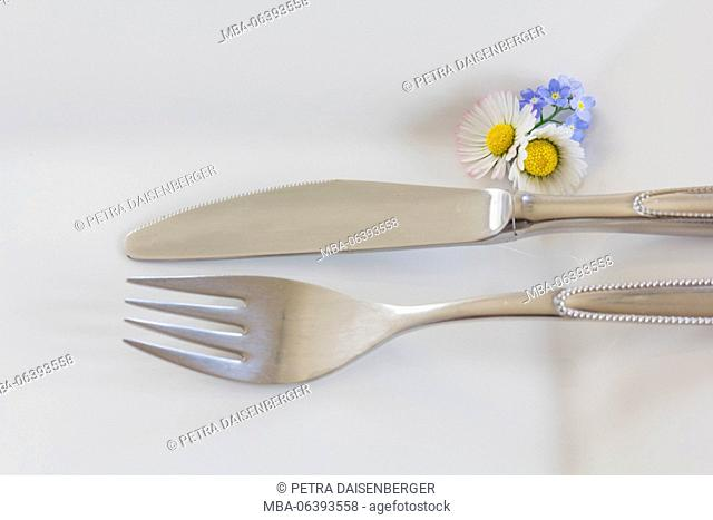 knife and fork on a white plate, laid table