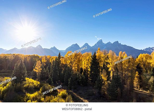 USA, Wyoming, Rocky Mountains, Grand Teton National Park, Cathedral Group and aspens in autumn