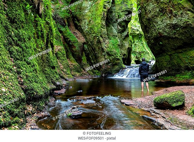 Great Britain, Scotland, Trossachs National Park, Finnich Glen canyon, The Devil's Pulpit, River Carnock Burn, male tourist standing in water