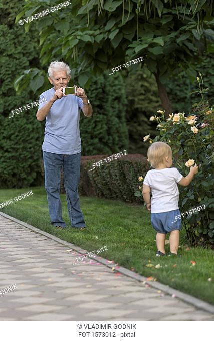 Grandfather photographing girl touching rose at park