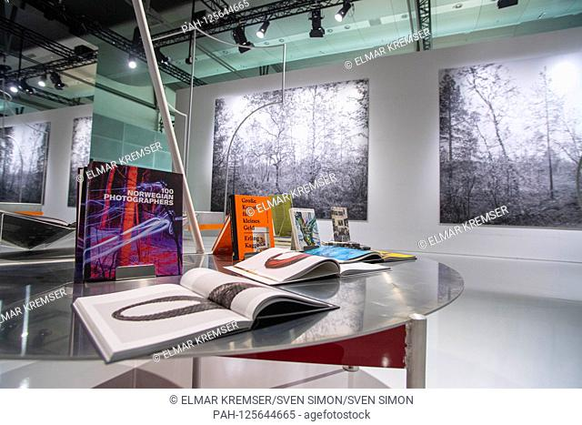 An element in the Guest House of Honor, feature, general, border motif, Presentation of the Norway Pavilion of the Guest of Honor Norway at the Frankfurt Book...