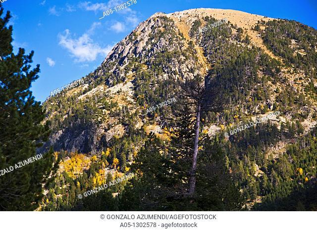 Aiguestortes area. Aigüestortes i Estany de Sant Maurici National Park, Pyrenees Mountains, Boi-Taull Valley. Alta Ribagorça, Lleida province, Catalonia, Spain
