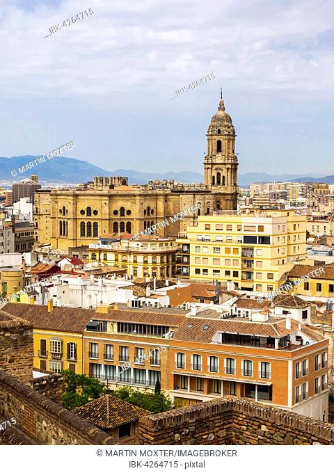 View from Monte de Gibralfaro to the historic centre with Málaga Cathedral, Málaga, Andalusia, Spain Cathedral