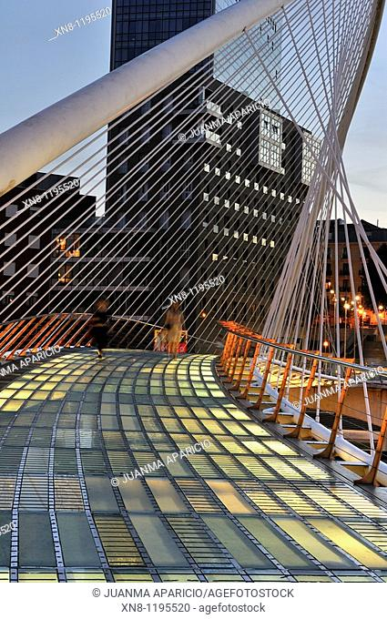 Bridge Night Photography Calatrava Santiago and Torres Isozaki in Bilbao
