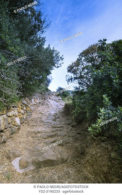 Montagna Grande, district of Siba. trail to the cave of the dry bathPantelleria, Sicily