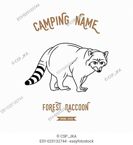 Raccoon vector illustration. European animals silhouettes vintage. Logo design