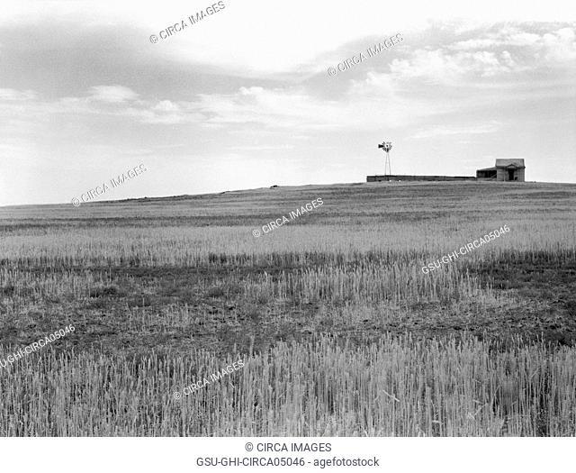 Wheat Fields, spoiled by Grasshopper Plague near Beach, North Dakota, USA, Arthur Rothstein, Farm Security Administration, July 1936