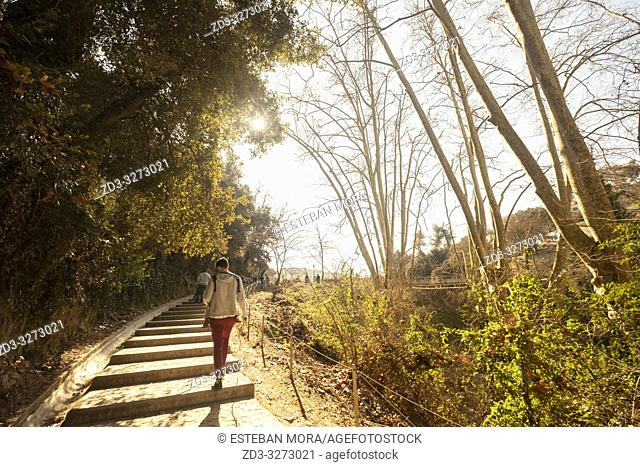 man walking on stairs in the middle of the woods, backlight sunset, Vallvidrera, Barcelona, Spain