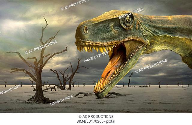 Tyrannosaurus Rex roaring in desolate landscape
