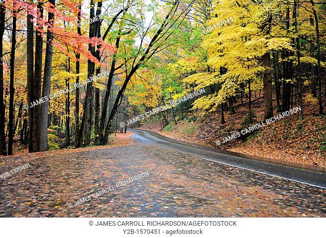 Smoky Mountains National Park Tennessee Little River Road in autumn