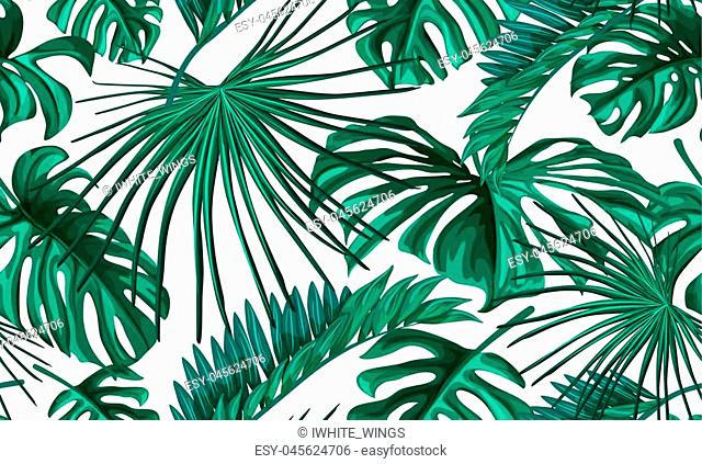 Vector tropical leaves summer seamless pattern background template. Jungle forest palm monstera floral exotic plant aloha hawaii botanical frame