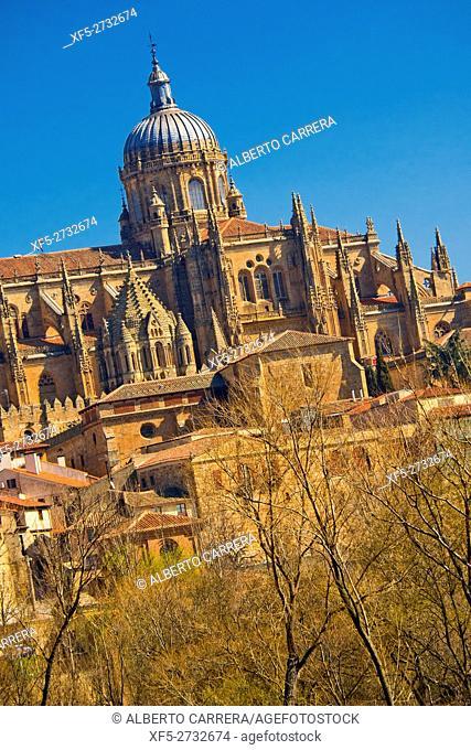 New and Old Cathedral of Salamanca, Cathedral of the Asunción de María, Gothic Renaissance Baroque Style,16th-18th century