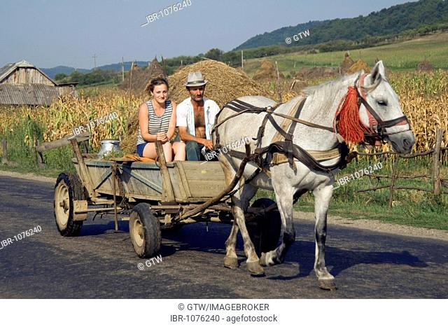 Farmers with a horse cart on a country road, Maramures, Romania