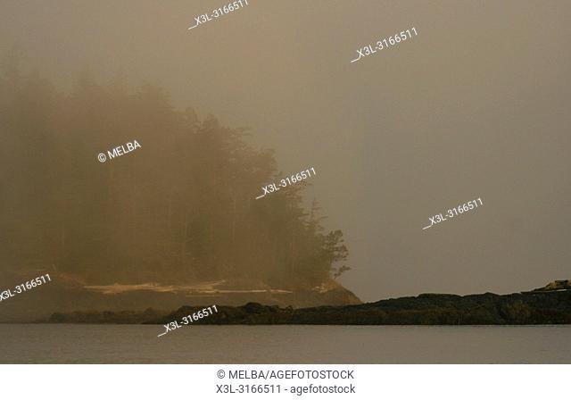 Johnstone strait. Vancouver island. British Columbia. Canada
