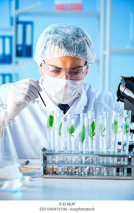 Biotechnology concept with scientist in lab