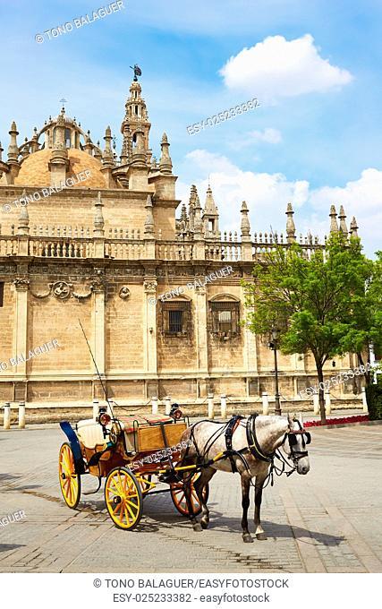 Seville cathedral facade horse carriage Sevilla Andalusia Spain