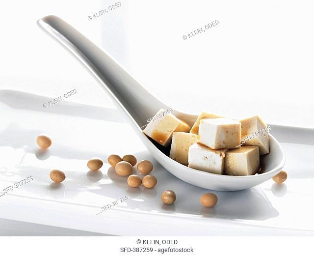 Tofu cubes on spoon, soya beans