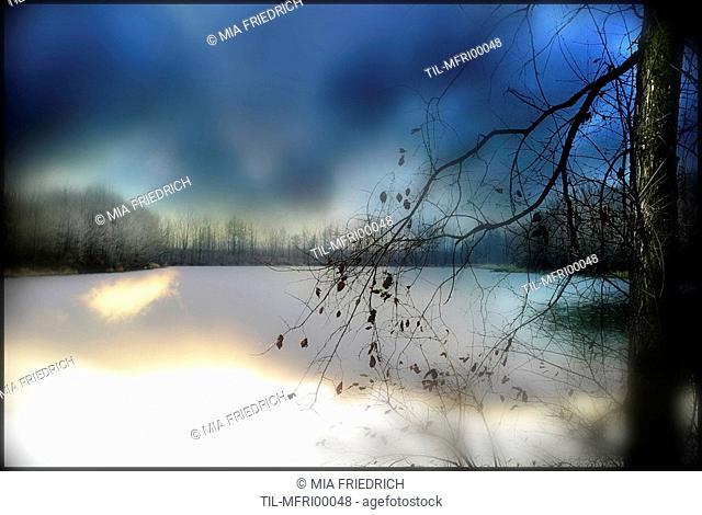 A winter rural scene