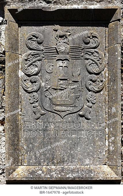Relief in the monastery ruins, Ross Abbey near Headford, County Galway, Connacht, Republic of Ireland, Europe
