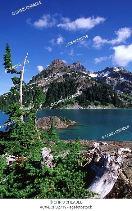 Strathcona Provincial Park, Mt Septimus and Cream Lake, Vancouver Island, British Columbia, Canada