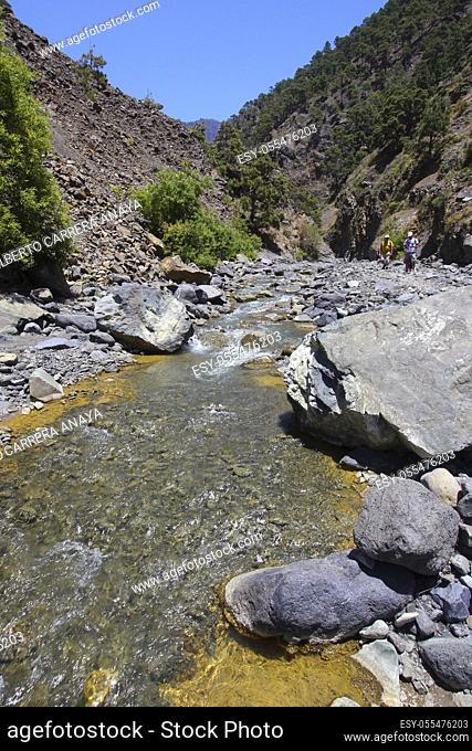 Barranco de las Angustias, Taburiente River, Caldera de Taburiente National Park, Biosphere Reserve, ZEPA, LIC, La Palma, Canary Islands, Spain, Europe