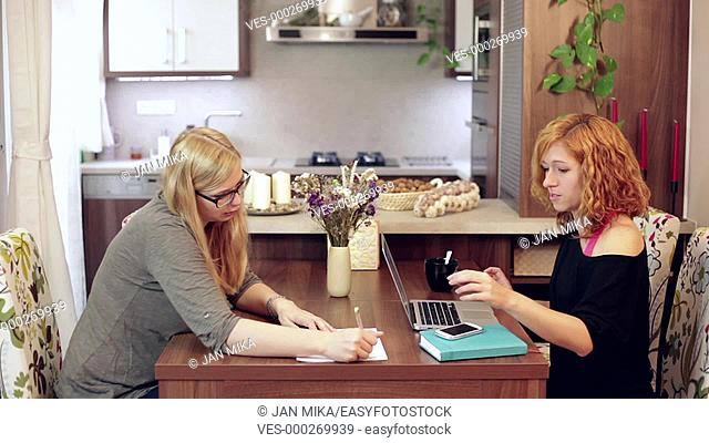 Two young professional women working from home. Home office concept