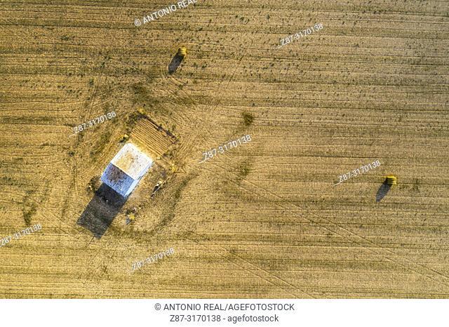 Drone view of farmlands. Almansa, Albacete province, Spain