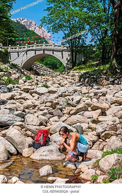 Woman drinking water from a small mountain stream, Seoraksan Nationalpark, Gangwon, South Korea
