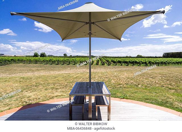 New Zealand, North Island, Hawkes Bay, Havelock North, vineyard table