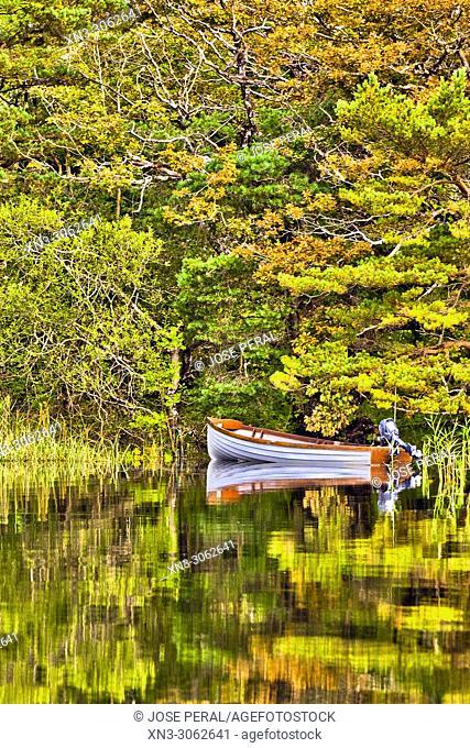 Lakes of Killarney, Killarney National Park, Killarney, County Kerry, Ireland, Europe